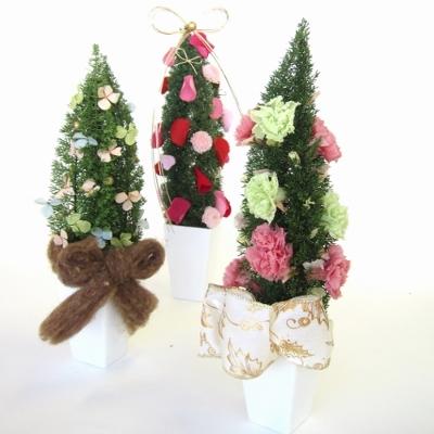 フォックステイルのクリスマスツリー