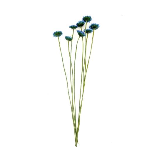 マーガレット ドライ Small Pack/870-ブルー