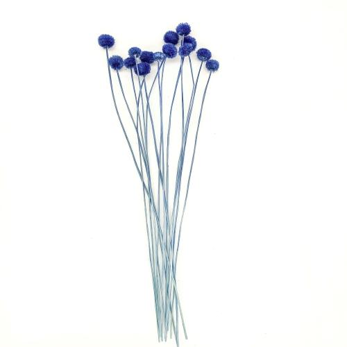 アマレリーノ ドライ Small Pack/870-ブルー