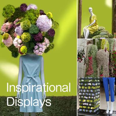 Inspirational Displays