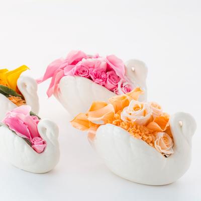 Swan flower
